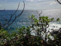 Falaise sentier du littoral devant la propriété